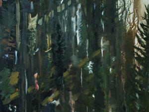 Skogen/The forest